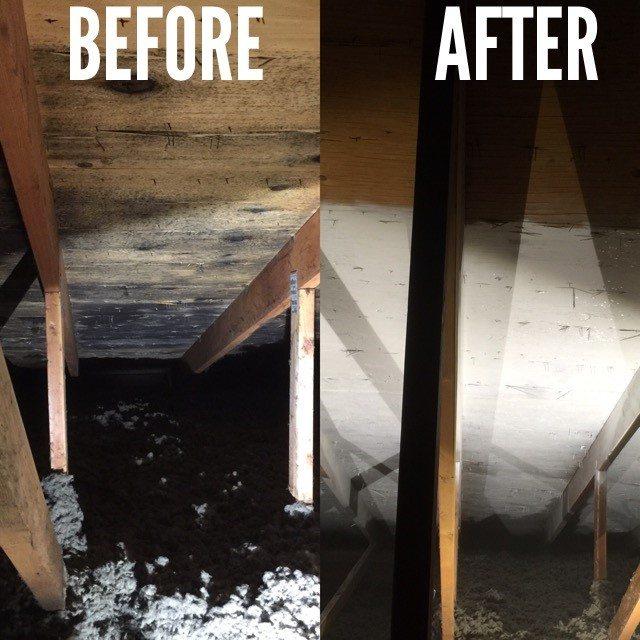 Attic Mold Remediation Brothers Restoration Denver